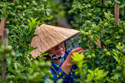 Picture of Vietnam
